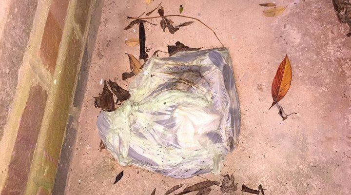Image may contain: Soil, Trash, Art, Painting, Bag, Plastic Bag, Plastic