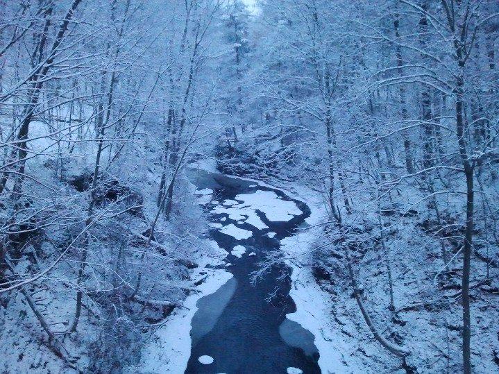 Cornell winter
