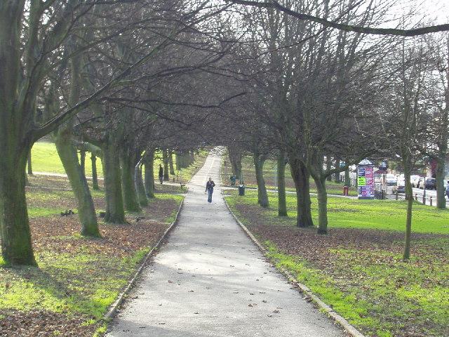 Hyde park sex