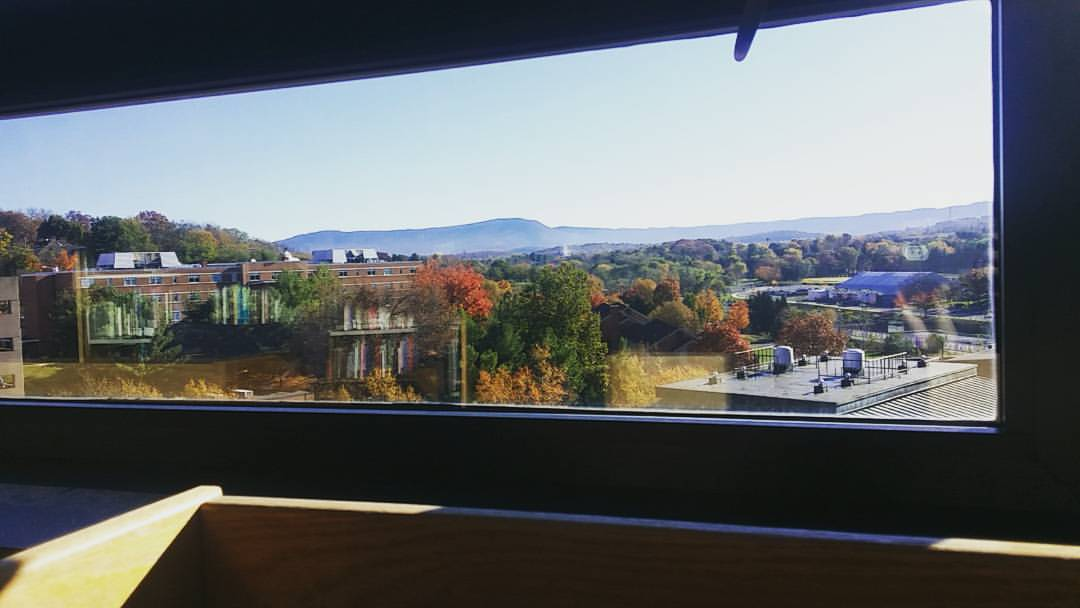 View from Carrier Library