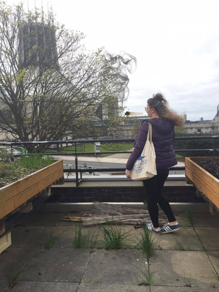 guild roof garden smoke weed 420