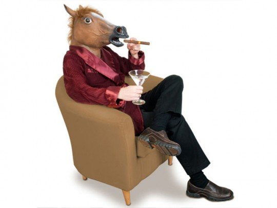 Pour yourself a drink and celebrate the Year of the Horse!