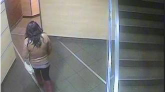 CCTV footage captured the woman entering the toilet