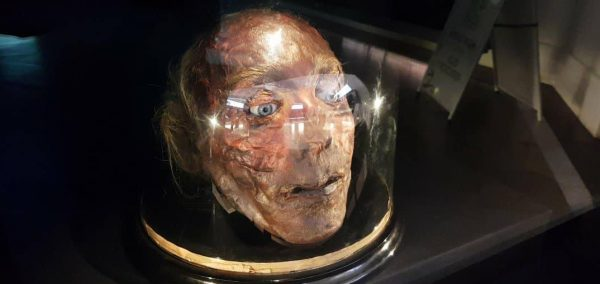 Jeremy Bentham S Actual Decomposing Severed Head Is Now
