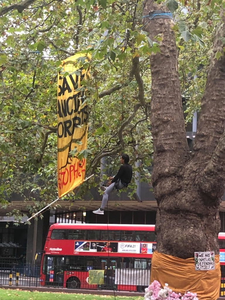 Tree protestor stop HS2 protest