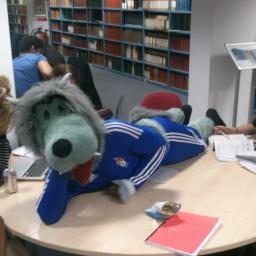 The Wessex Wolf studying hard in Hartley