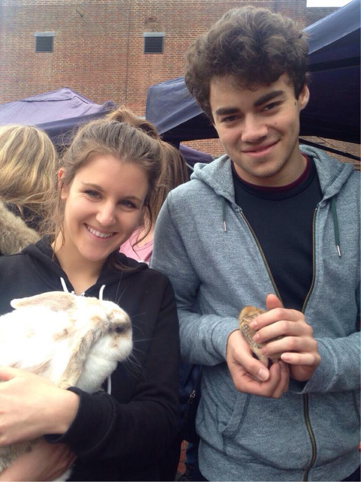 Petting zoo 22