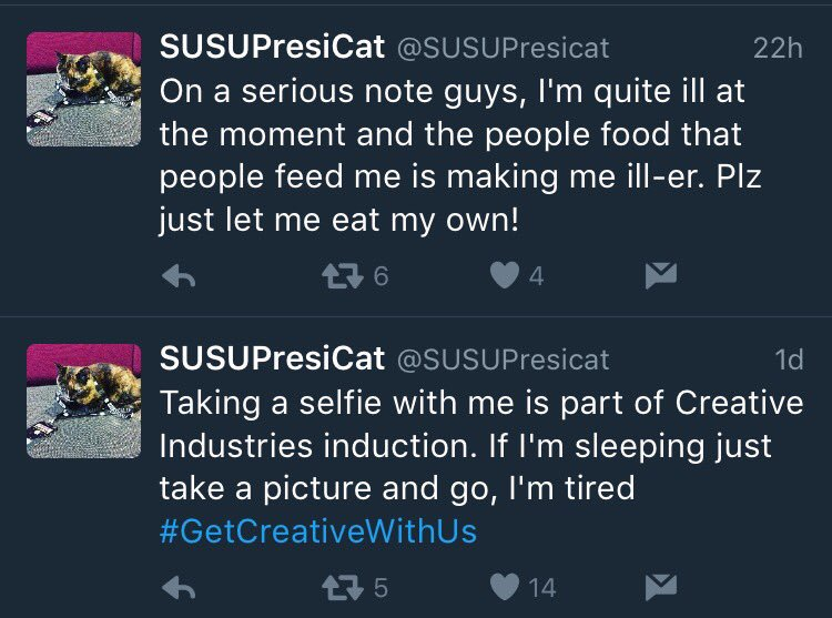 The since-deleted tweets indicate negligence in taking Susu's illness seriously