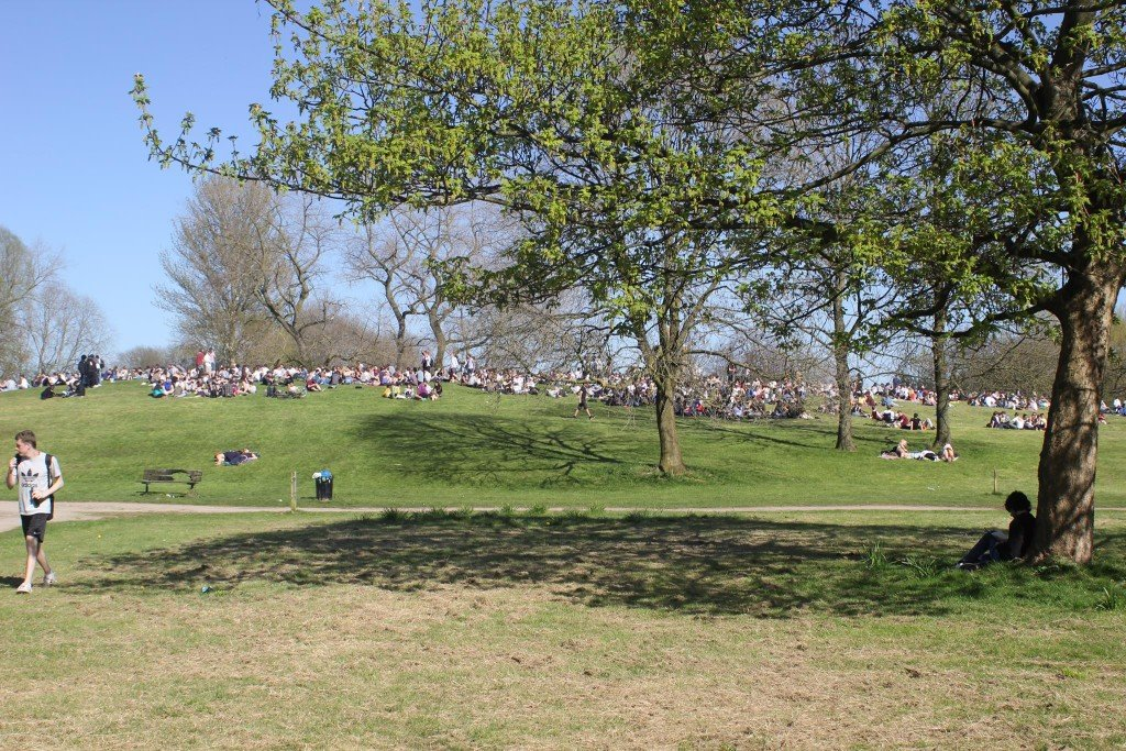 Swarms of people came to the park to smoke weed together