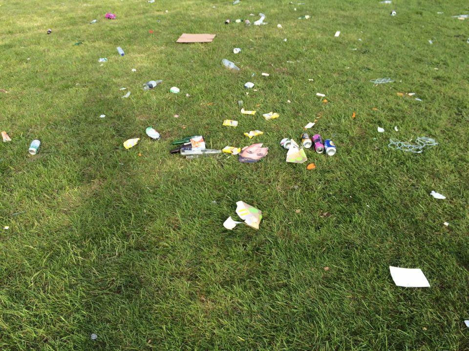 The whole park is covered with litter
