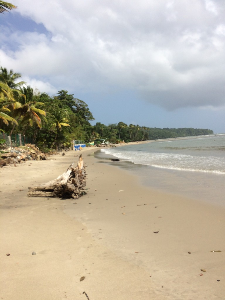 A glimpse of the scenic coast off Trinidad