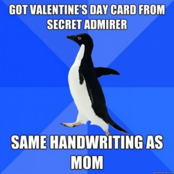 We Love To Hate Valentine's Day Fascinating Hate Valentine Day Quotes