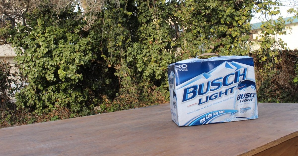 Why Busch light is the greatest beer in the world