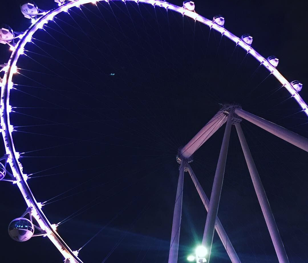 Image may contain: Amusement Park, Ferris Wheel