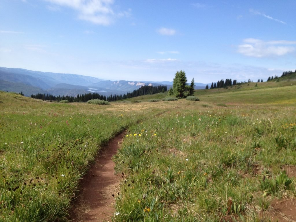 One of the many gorgeous views on the hike up to Engineer Mountain. July 2012.