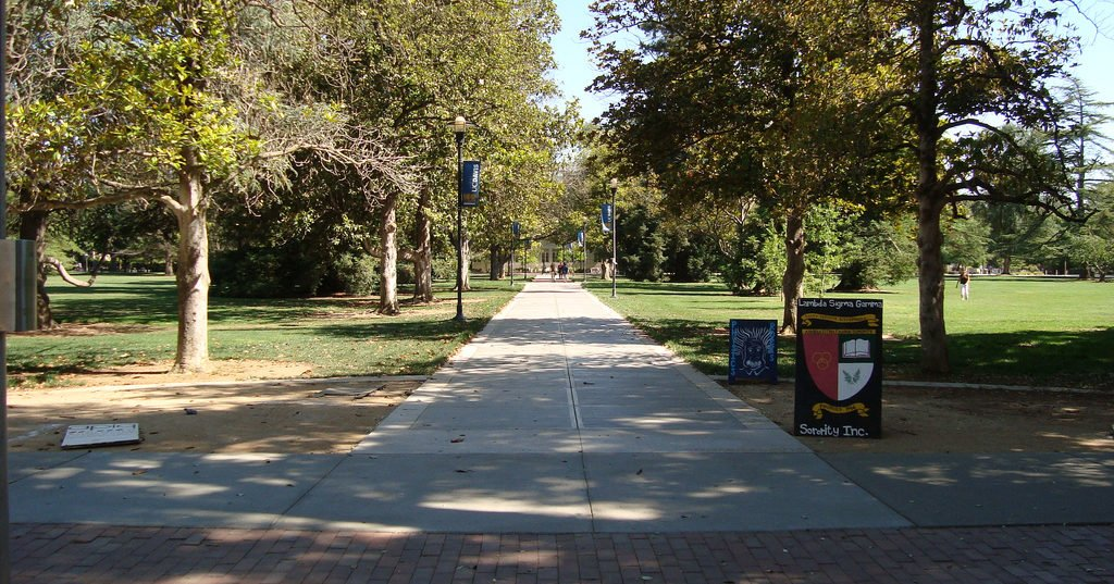 Uc Davis Open Campus Is Breeding Hate Not Productive