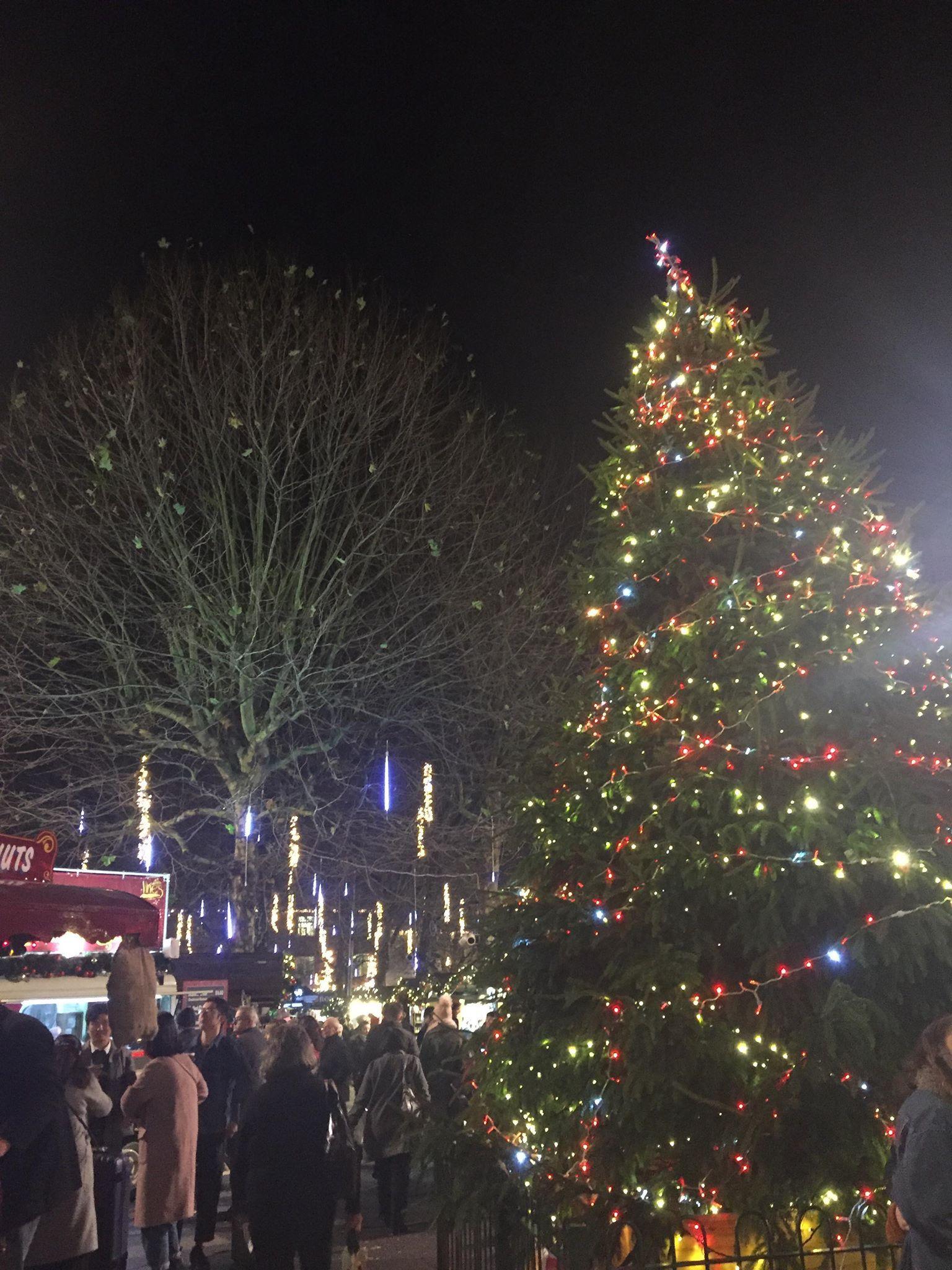 Image may contain: Crowd, Lighting, Night Life, Human, Person, Tree, Plant, Ornament, Christmas Tree