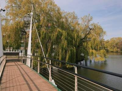 Image may contain: Willow, Bridge, Building, Tree, Plant