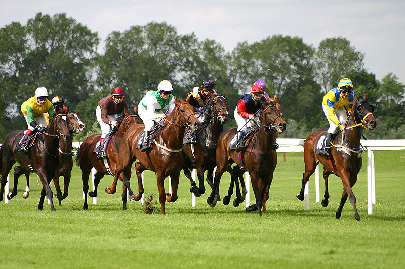 800px-horse-racing-1