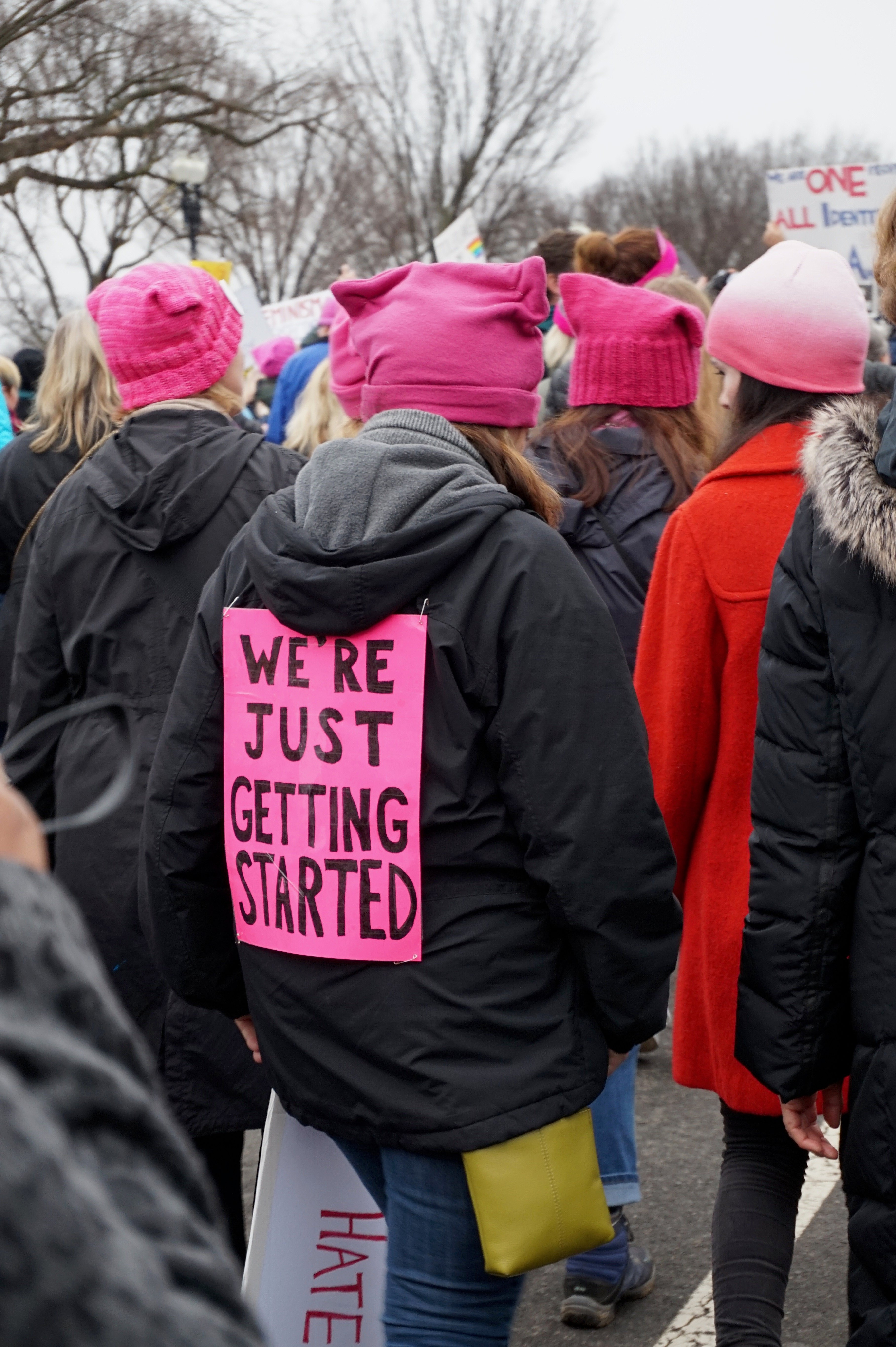 The Absolute Best Protest Signs From The Women's March On