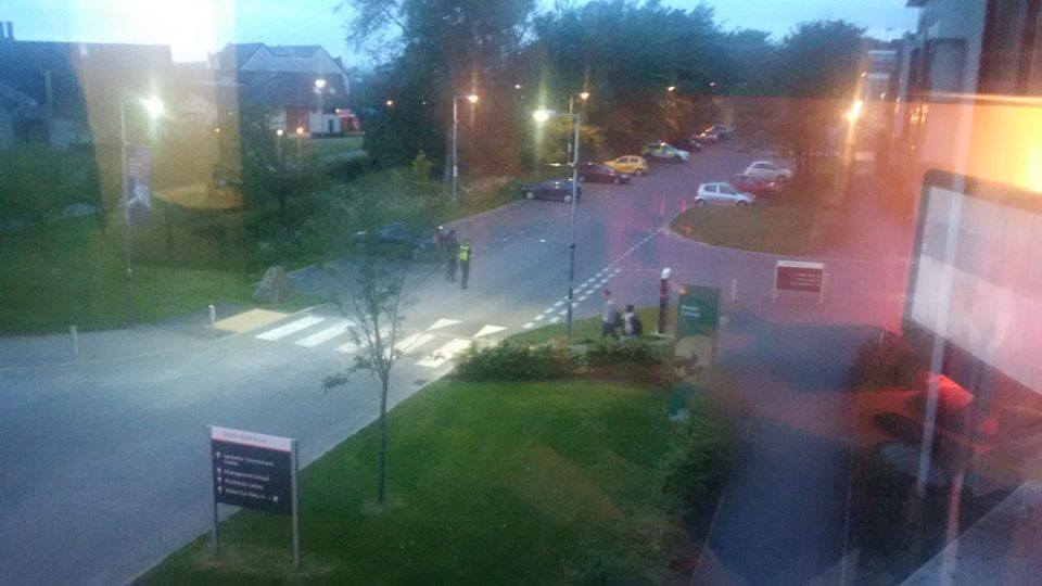 Cops walking to Grizedale houses