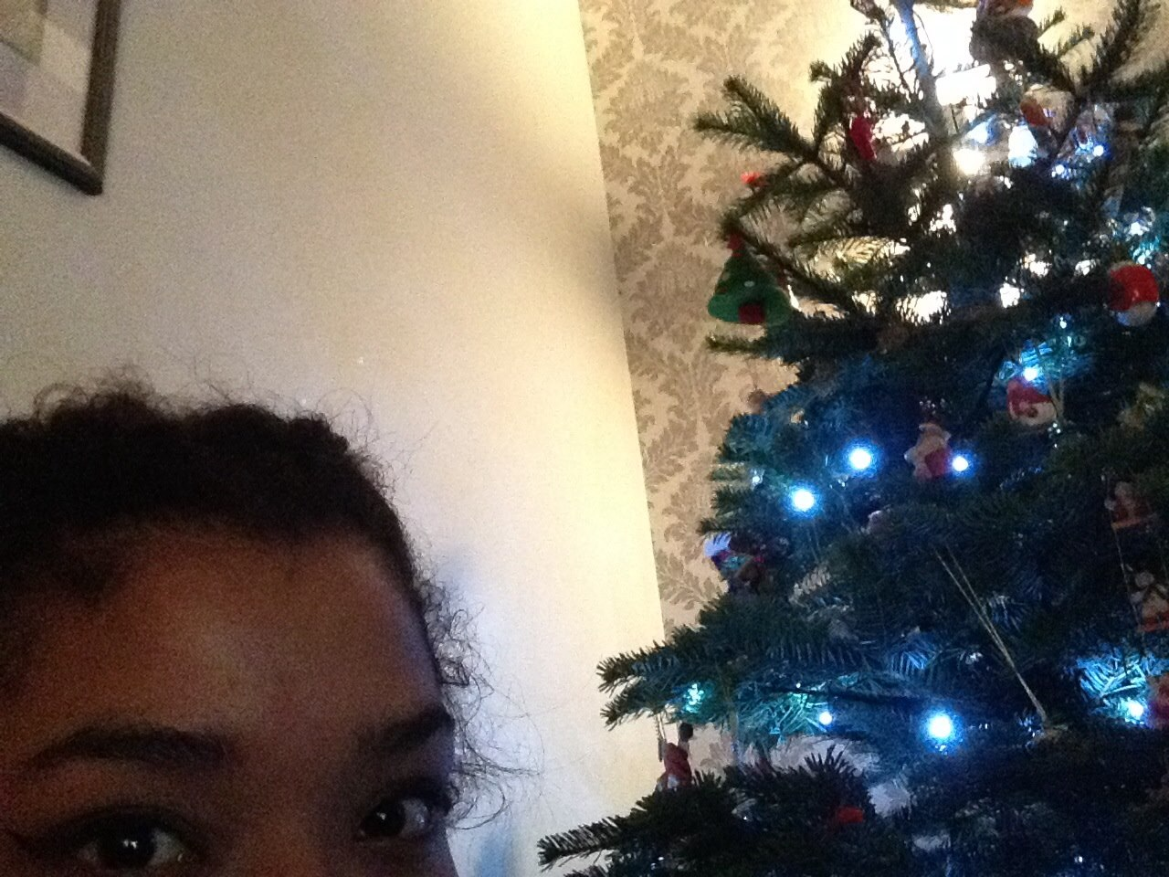 Ellie: If you are strictly herbivore and find yourself hungry on Christmas day, eat your tree for a nutritious meal.