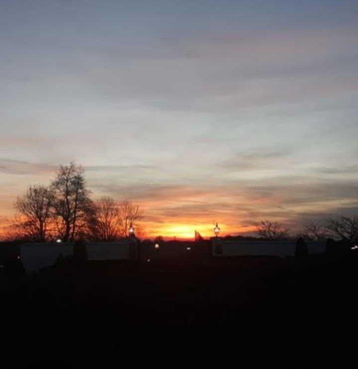 Image may contain: Art, Painting, Landscape, Tree, Plant, Vegetation, Sunlight, Sun, Dawn, Dusk, Sunset, Red Sky, Sunrise, Sky, Outdoors, Nature