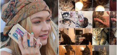 Image may contain: Abyssinian, Pet, Mammal, Cat, Animal, Person, People, Human, Poster, Collage