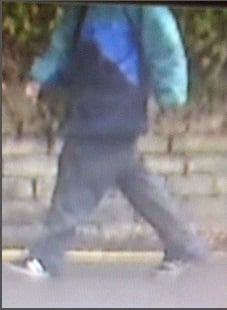 He approached two women on Melbourne Avenue