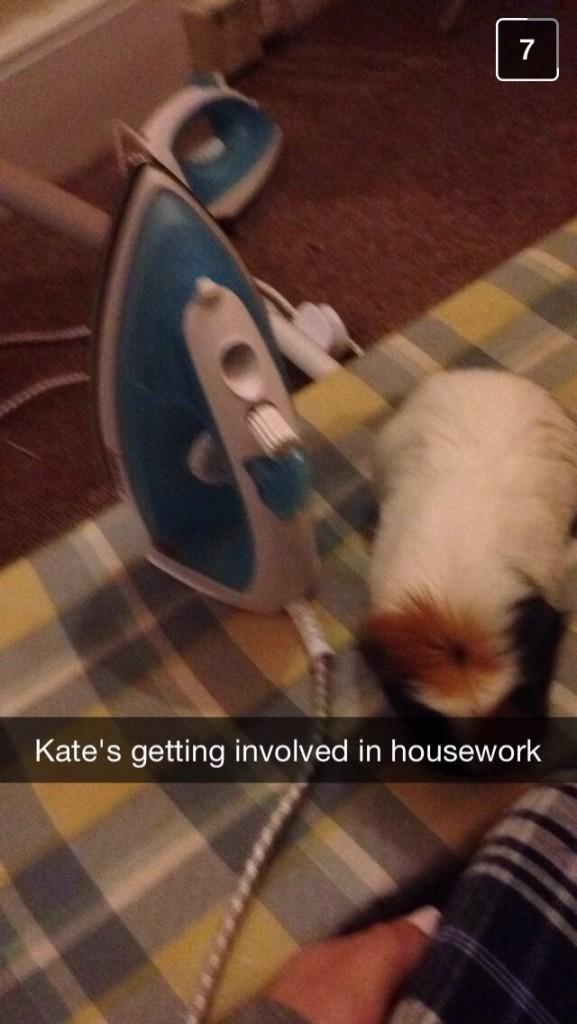 Kate Middleton earning her keep