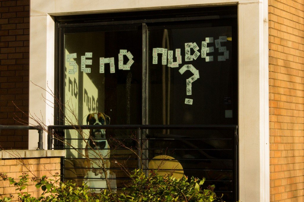 A window reading: 'Send Nudes?' at Endcliffe Village.