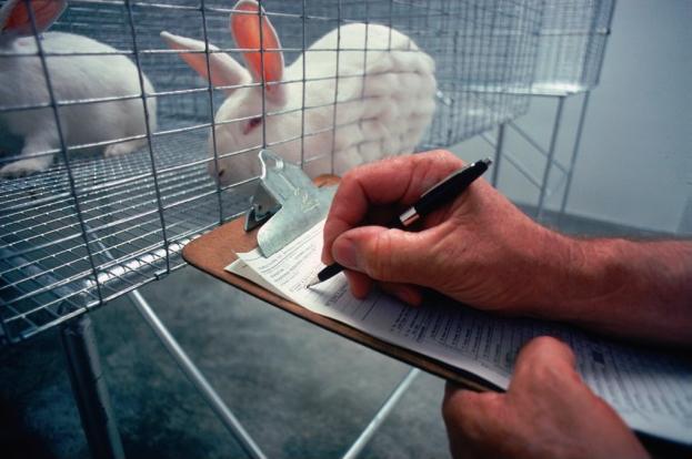 lab_animal_care