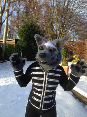 Meet the Furries who spend thousands dressing up as giant