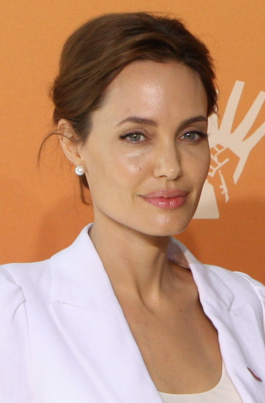 Jolie at the Global Summit in 2014