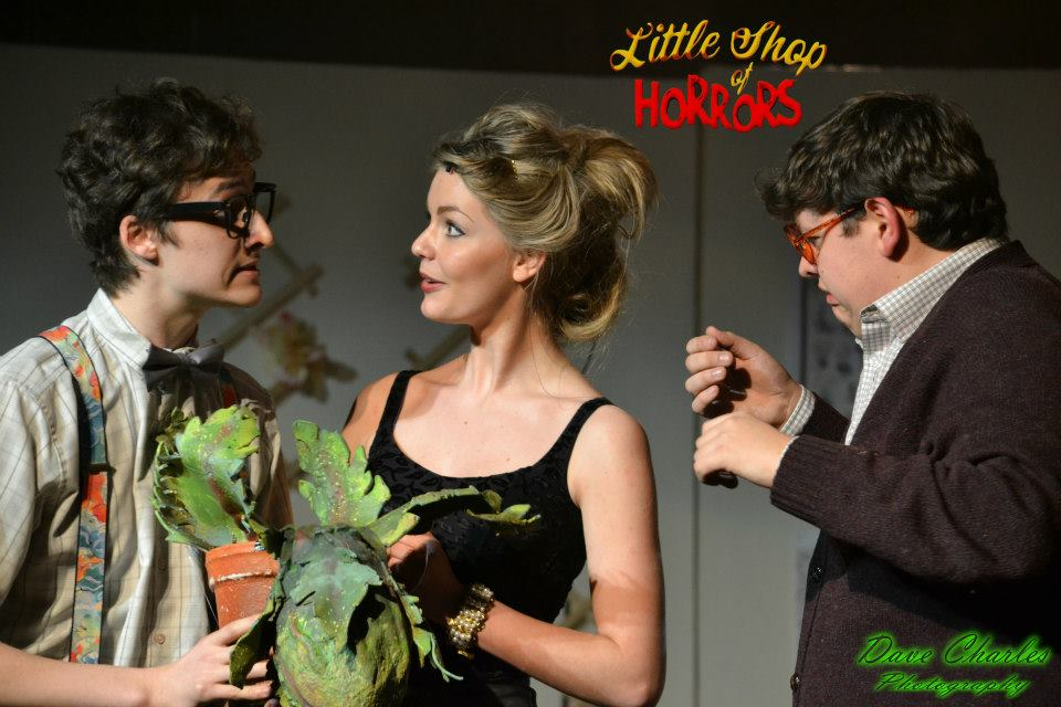 review of little shop of horrors On nov 10, the cupertino actors theatre (cat) opened the weekend with a new  rendition of alan menken and howard ashman's little shop.