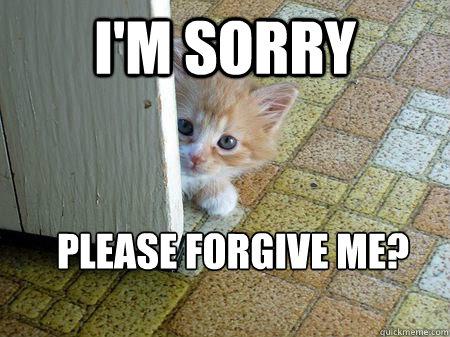 please forgive me