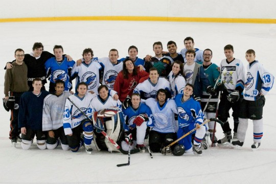 IceHockeyTab2