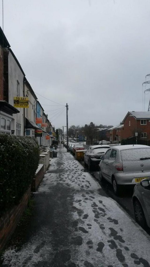 snow in selly