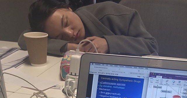 Image may contain: Asleep, Cup, Pc, Laptop, Electronics, Computer