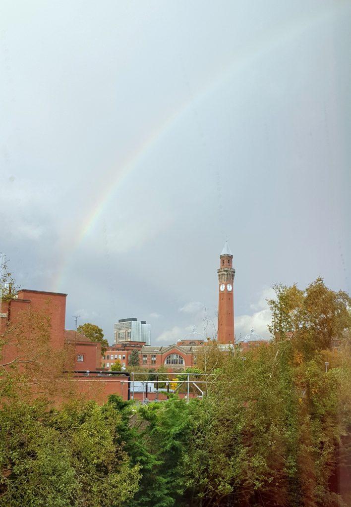 rainbow joe