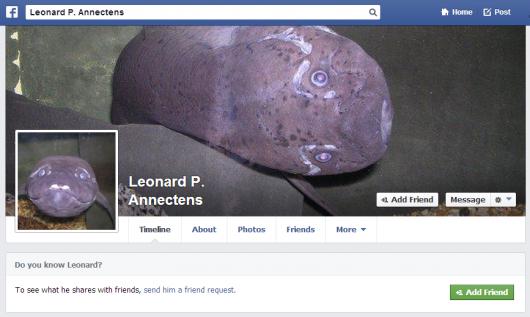 fish facebook