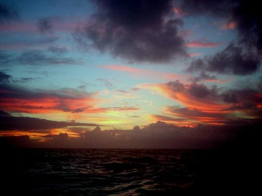Water water everywhere: life at sea. Photo: Luke Birch
