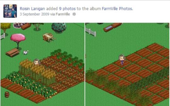 Who didn't play FarmVille!? (I didn't...)
