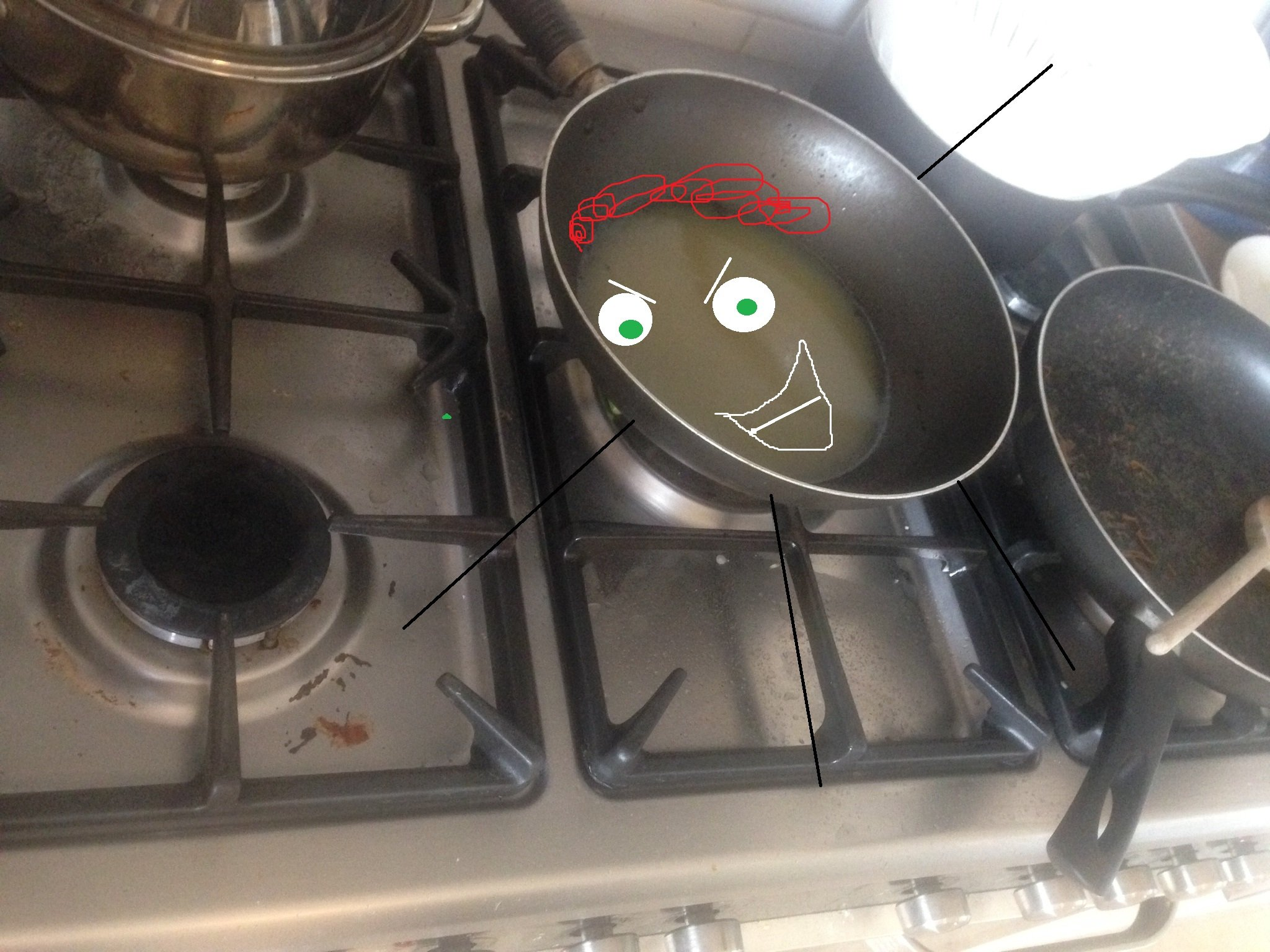 Meet 'Fat Pan', our stinkiest housemate