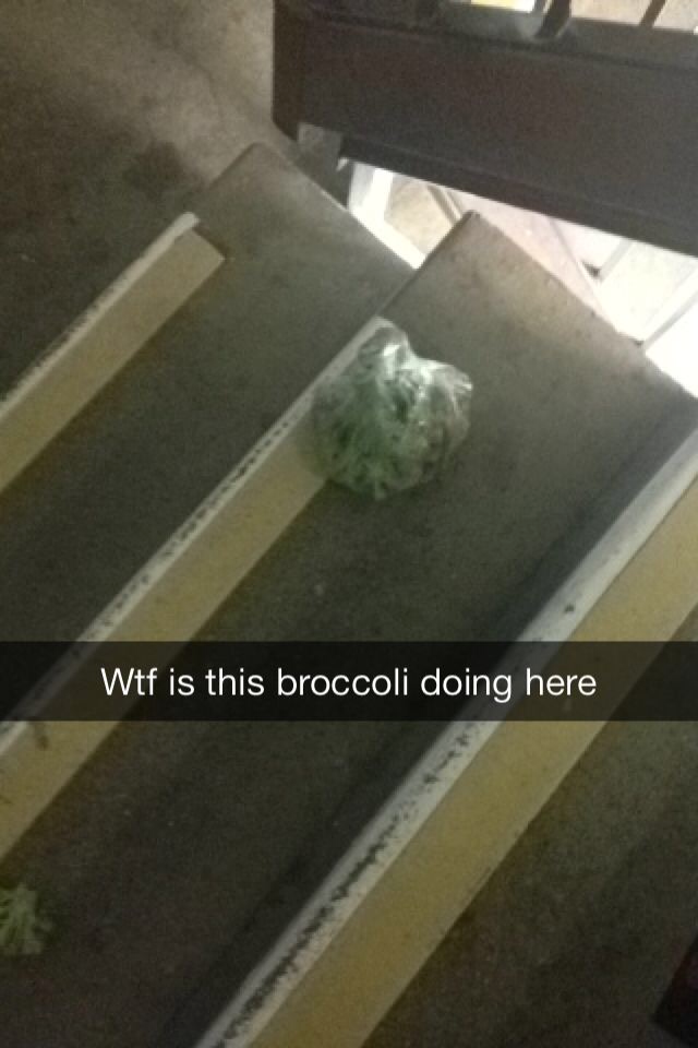 what was that broccoli doing there? Poor thing