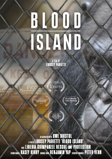 Image result for blood island lindsey parietti