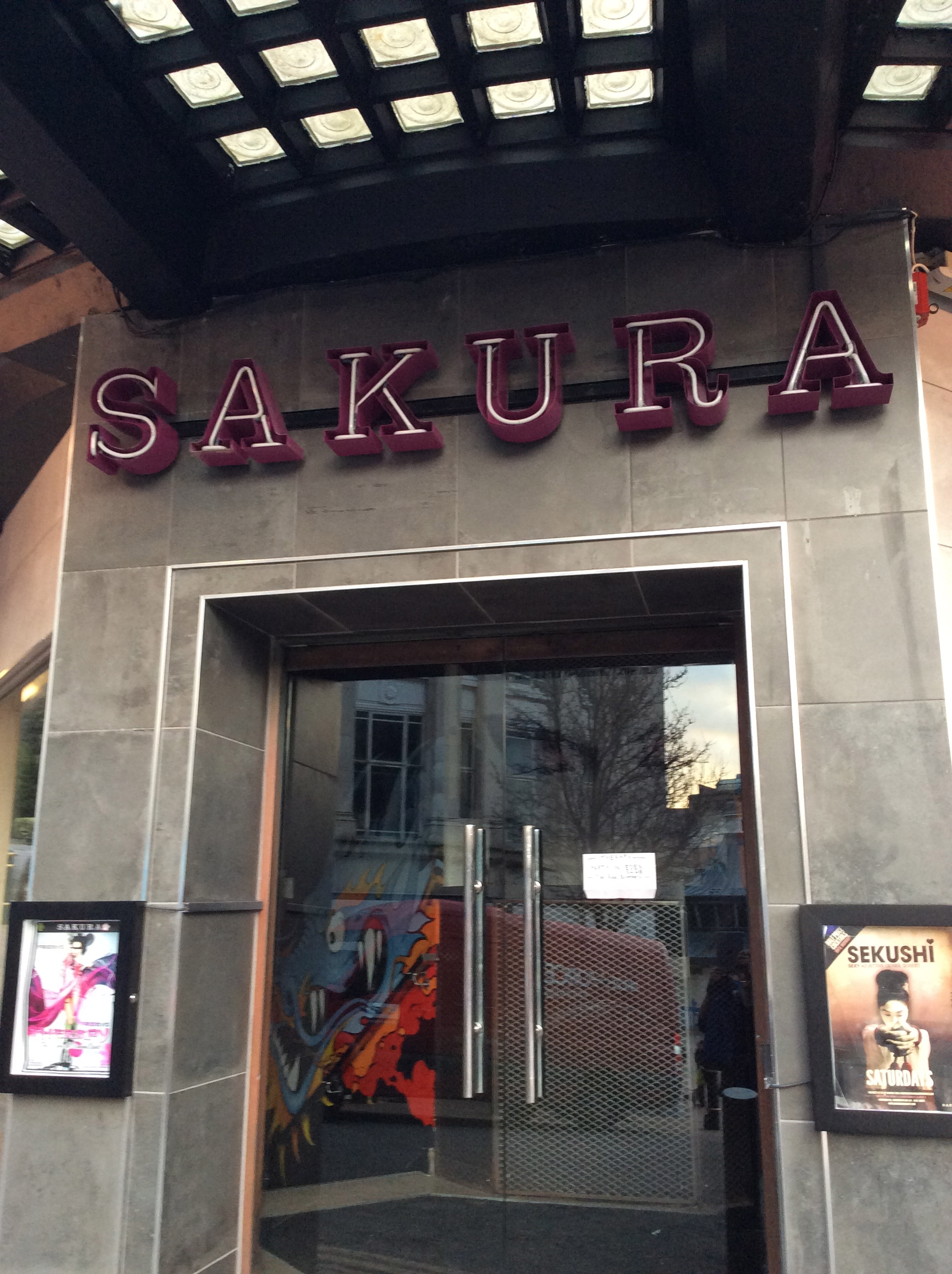 What even is a sakura anyway?