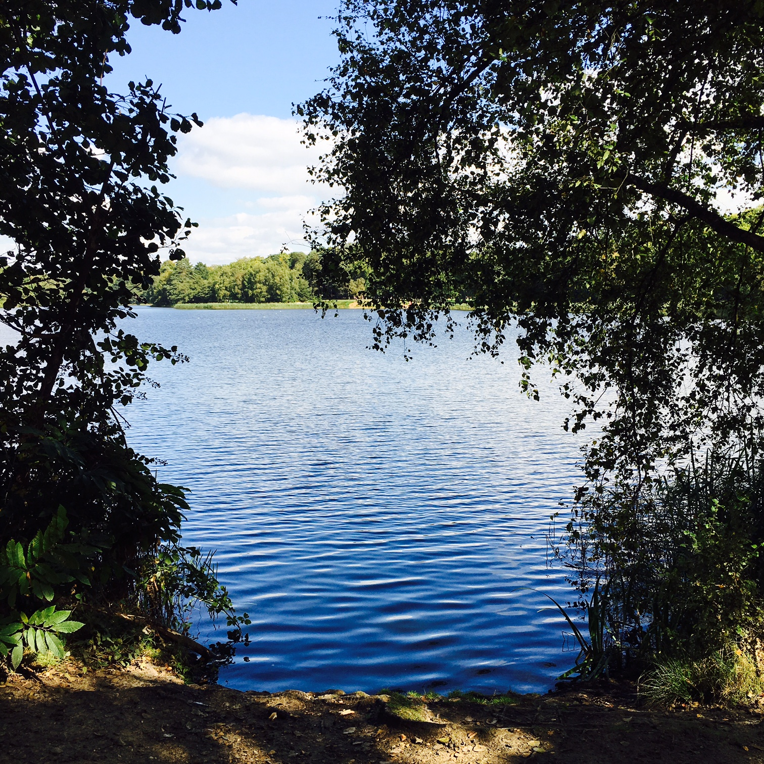 Go to Virginia Water and pretend that your problems don't exist.