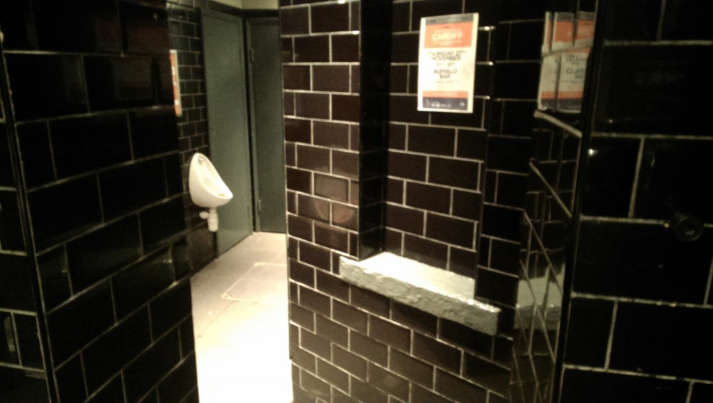 The bewitching toilets of Buffalo.