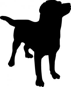 dog-149300_640